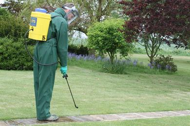Hand Held Spraying Pesticide On Park Pathways