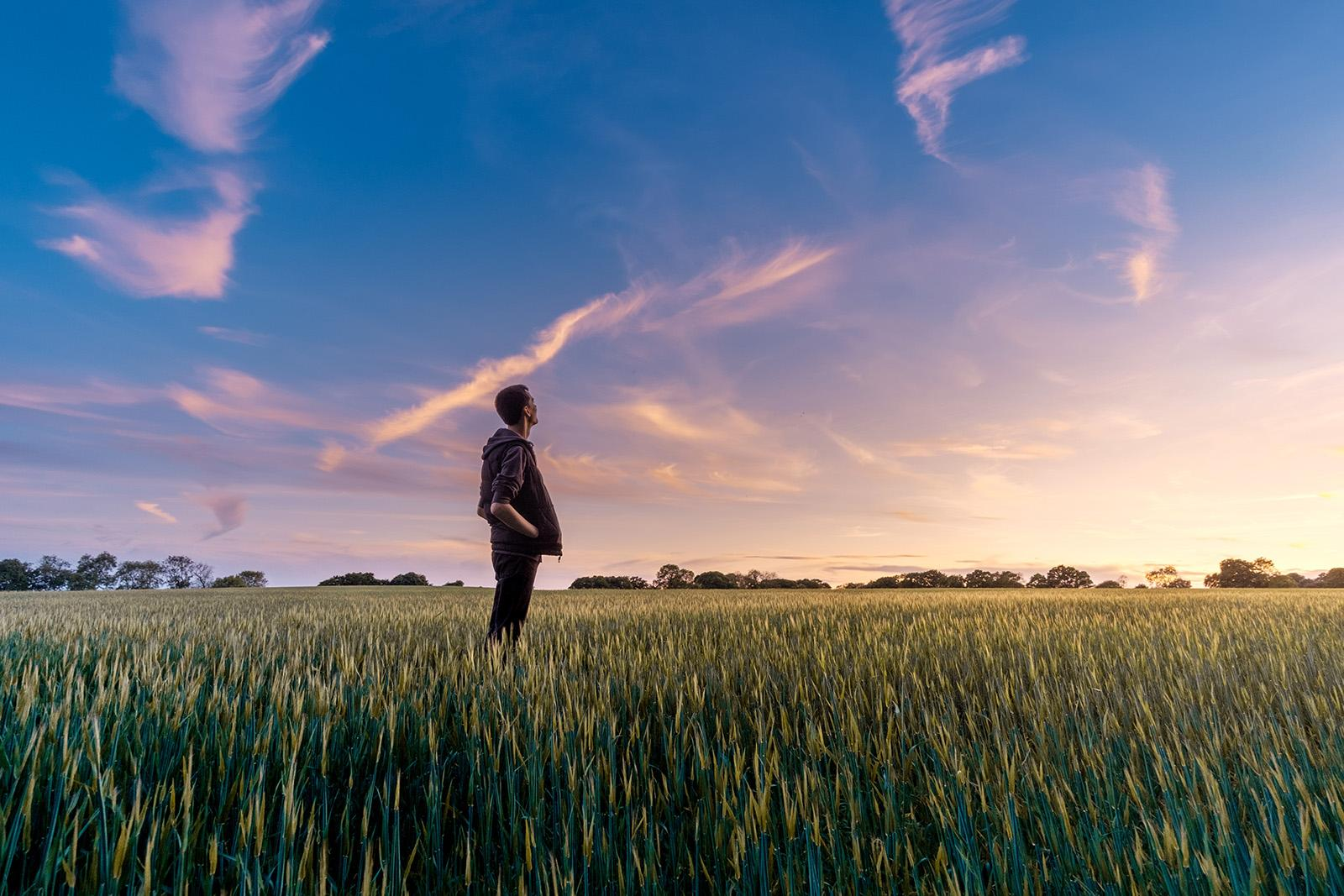 Man in field staring at sky