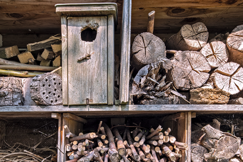 Different components of a bug hotel